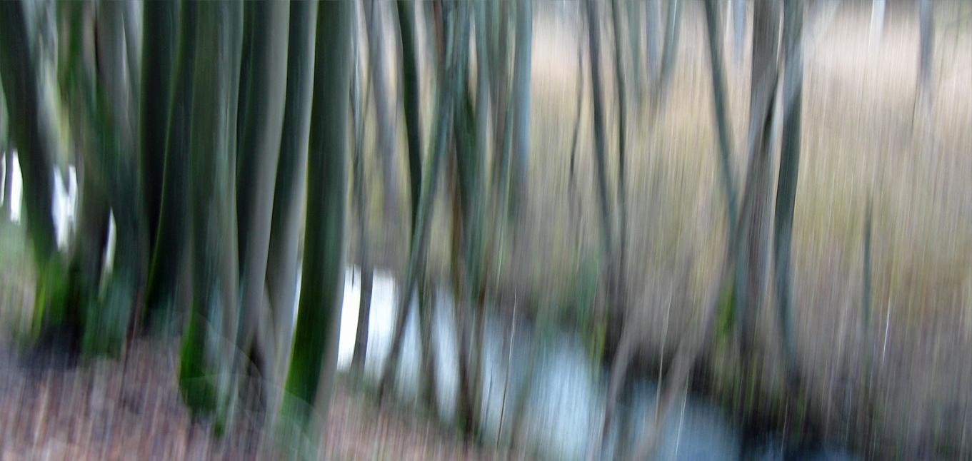 Naturrauschen Motiv 6