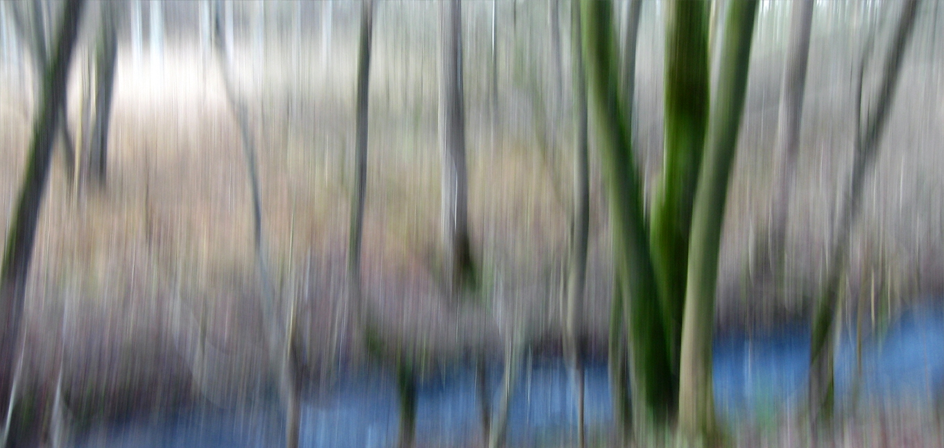 Naturrauschen Motiv 7