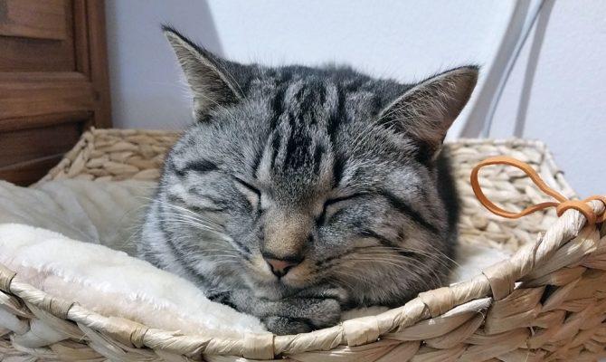 Endlich schlafen!